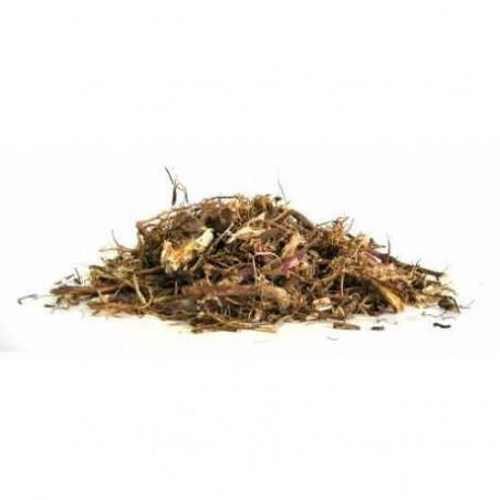 Echinacéa Racine 50g-1kg